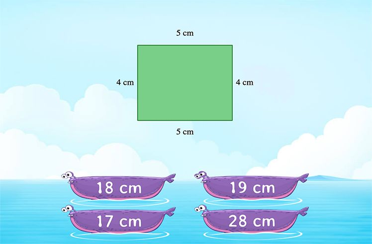 FInd the Perimeter of Polygons