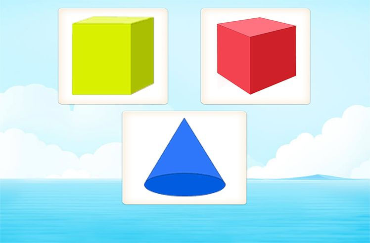 Identify Shapes on the basis of Surfaces